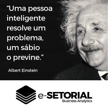 Uma pessoa inteligente resolve um problema, um sábio o previne.